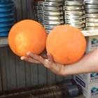 Бьём по шарам. Удар по ценам на промывочные мячи для бетононасосов