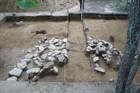 Археологи в Приморье нашли жилище с древнейшей системой отопления